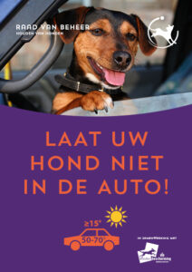 hond-in-auto-stopper-nl