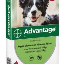 Advantage Hond 250