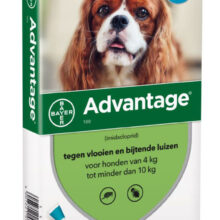 Advantage Hond 100