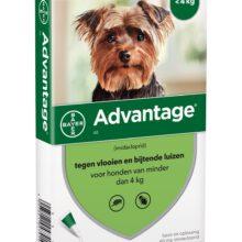 Advantage Hond 40