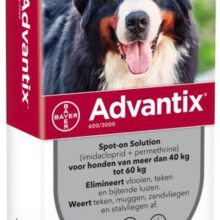 Advantix 600 > 6 Pipet